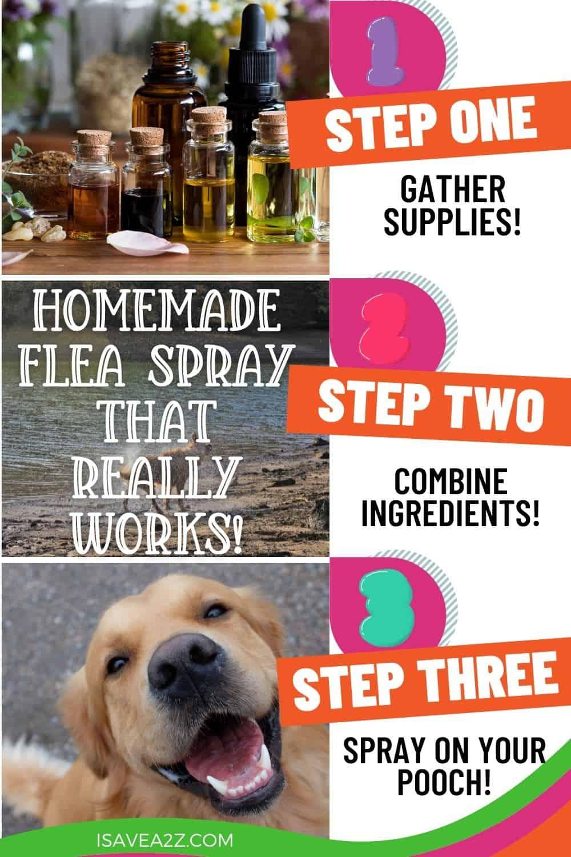 Homemade Flea Spray recipe that really works!