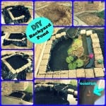 DIY Easy Backyard Pond Design Idea