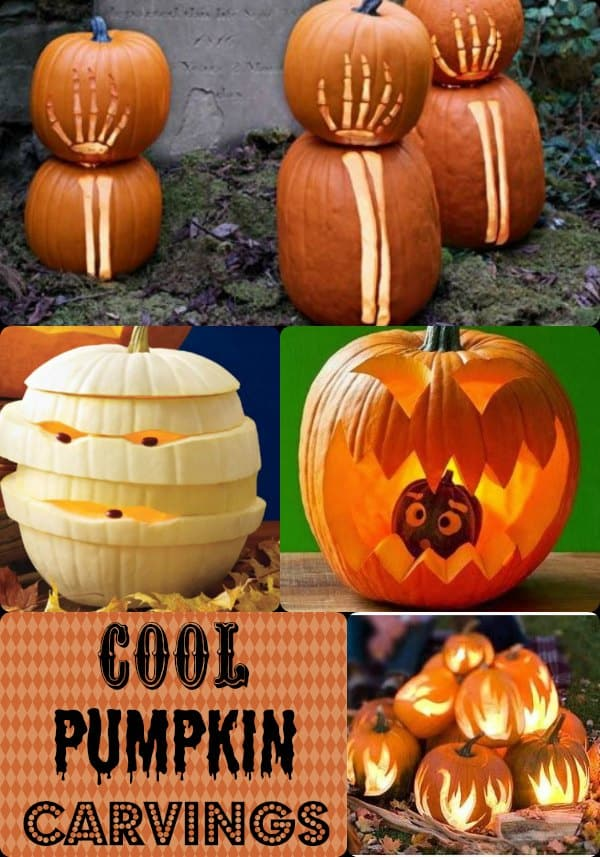 cool pumpkin carvings be the hit of halloween with these