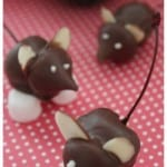 Chocolate Cherry Mice Recipe
