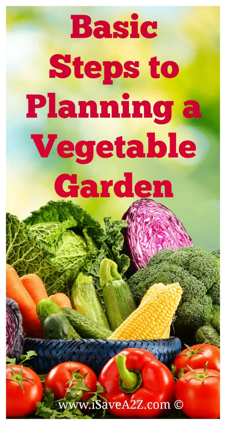Steps To Apply Makeup For Beginners: Basic Steps To Planning A Vegetable Garden