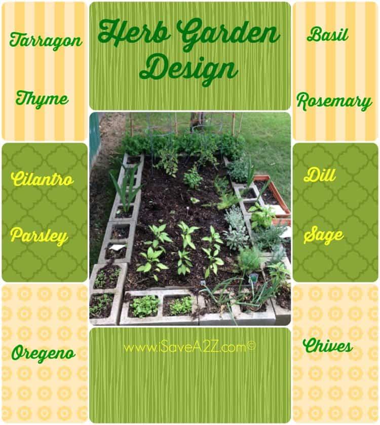 Versatile Herb Garden Design