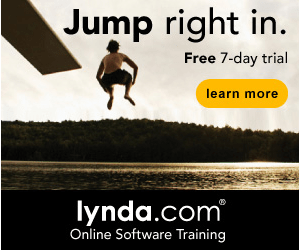 Online Learning at your own pace with lynda.com