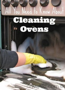 All You Need to Know About Cleaning Ovens