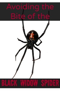 Avoiding the Bite of the Black Widow Spider