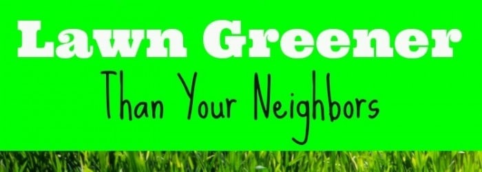 How to Make Your Lawn Greener Than Your Neighbors