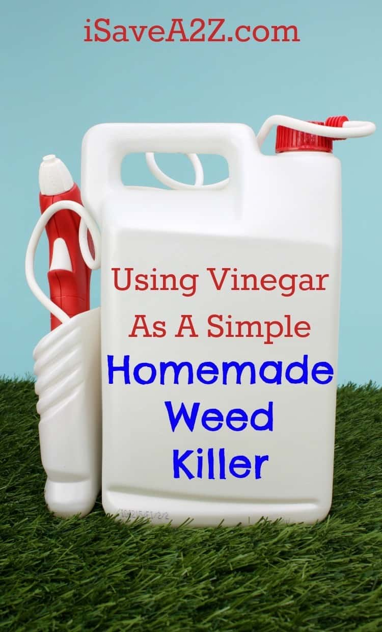 Using Vinegar As A Simple Homemade Weed Killer Isavea2z Com