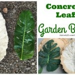 DIY Concrete Leaf Garden Bowl