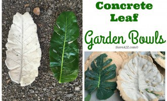 DIY Concrete Leaf Garden Bowl