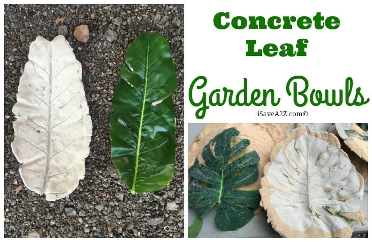 How To Make Chocolate Leaves With Real Leaves