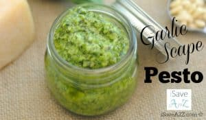 Easy Garlic Scape Pesto Recipe