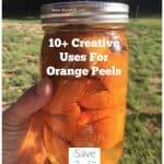 Top 10 Creative Uses for Orange Peels