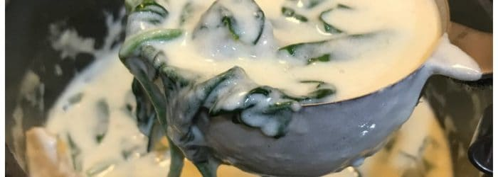 Low Carb and Keto Chicken Alfredo Pasta Recipe