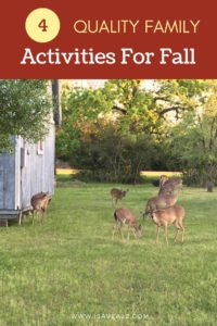 Wholesome fall family activities can be geared around anything from personal hygiene to jumping into a pile of leaves in the backyard!